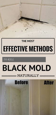 The most effective methods to kill black mold naturally.
