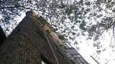 at wukang road. i was way heading home from the shanghai drama art center. the building has a long history.