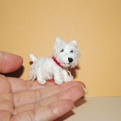 Miniature Westie dog - West Highland White Terrier