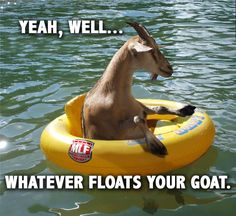 Whatever floats your goat. ~ I love this picture sOOOOO much! XD
