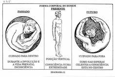 signos e o corpo humano - Pesquisa Google