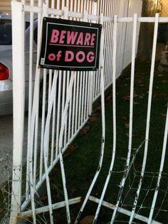 (Cuidado com o cachorro.)  É... é bom ter cuidado mesmo!