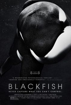 "Advocacy. This poster is from a more recent documentary, ""Blackfish."" The documentary attempts to shift people's focus on places like SeaWorld, but it does not give an opposing perspective to the arguments they make.  Want to learn how to make your own advocacy film? Here's a website that tells you how to get started: http://eckova.wordpress.com/2009/07/29/how-to-plan-your-advocacy-film/"