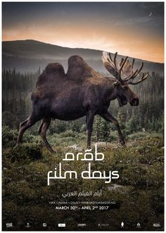 Camelk? Camoose? Poster for Arab Film Days in Oslo