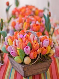 Tulipanes en cajas de madera