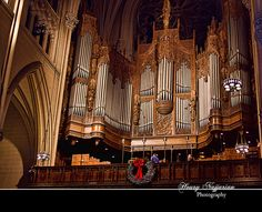 St. Patrick's Cathedral Pipe Organ....this thing is MASSIVE and I wanted to play it soooo bad.