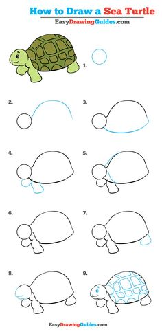 Learn How to Draw a Sea Turtle: Easy Step-by-Step Drawing Tutorial for Kids and Beginners. #SeaTurtle #drawingtutorial #easydrawing See the full tutorial at https://easydrawingguides.com/how-to-draw-a-sea-turtle-really-easy-drawing-tutorial/.