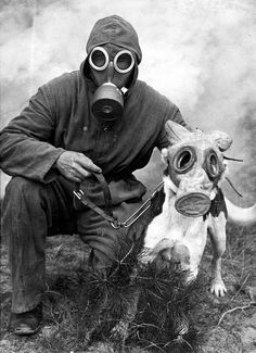 vintage everyday: Against Threat of Chemical Warfare – Vintage Photos Show Dogs Wearing Gas Masks during the Wars Gas Mask Art, Masks Art, Gas Masks, Plague Mask, Plakat Design, Psy Art, War Dogs, Military Dogs, War Photography