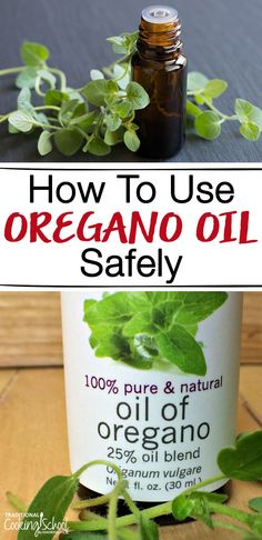 The oregano oil should not be confused with common oregano which is used as a spice for cooking. Common oregano is typically. Natural Home Remedies, Natural Healing, Herbal Remedies, Health Remedies, Natural Herbs, Natural Foods, Natural Products, Cold Remedies, Oregano Essential Oil