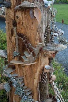Have an old tree stump in your outdoor classroom? Here's one way to make good use of it rather than removing it...