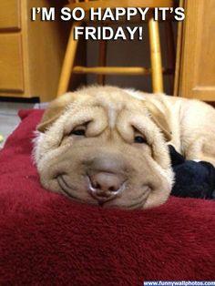 HaHA!friday pictures   So Happy It's Friday   Funny Wall Photos