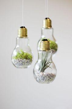 Ideas #DIY para reciclar #bombillas - Un terrario