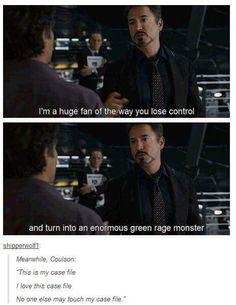The Avengers XD