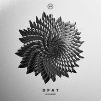Dpat - Bloom by SOULECTION on SoundCloud