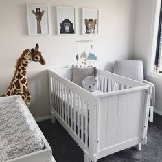 Modern safari nursery inspiration featuring the Urbane by Boori Lucia Convertible Plus Cot Bed. Safari Nursery, Safari Theme, Cot Bedding, Baby Bedroom, Nursery Inspiration, Baby Boy Nurseries, Pet Accessories, Cribs, Modern