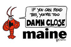 Maine Stuff Stickers - Too Close Lobster - Cartoon Gifts by . Maine, Cartoon, Stickers, Reading, Gifts, Fictional Characters, Presents, Reading Books, Favors