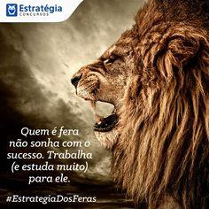 8 Mejores Imágenes De Português Frases Frases De Autores