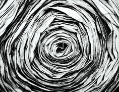 Paper Photograph - Paper Flower by Emir Dayan Mende