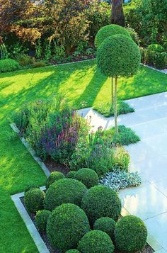 23 Ideas for modern landscape ideas topiaries Boxwood Landscaping, Small Backyard Landscaping, Modern Landscaping, Back Garden Design, Backyard Garden Design, Back Gardens, Outdoor Gardens, Front Garden Landscape, Contemporary Garden Design