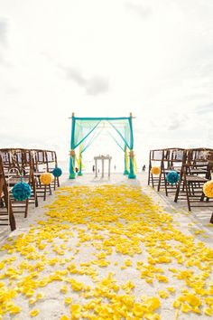 Yellow and Turquoise Beach Wedding Ceremony Decor with Yellow Rose Petals and Teal Bamboo Arch