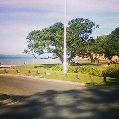 Back at the #gorgeous #easternbeach #beach #love #dying #thisheat #nz #nzsummer #kiwi #newzealandsummer #newzealand #Auckland #love #thisisthelife #thisismyhome by miss_sohc http://ift.tt/1JtS0vo