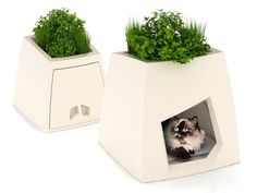 Combo Pet House & Planter