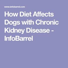 How Diet Affects Dogs with Chronic Kidney Disease - InfoBarrel