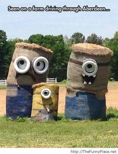 Funny creative farmer