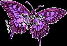 Butterfly Photo:  This Photo was uploaded by dulcika10. Find other Butterfly pictures and photos or upload your own with Photobucket free image and video...