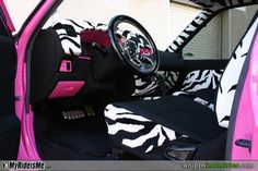 zebra stuff - seriously who else wants this