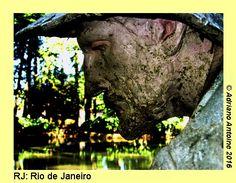 A selection of photographs taken in Brazil in 2008. Part 23: Rio de Janeiro(RJ) –Metal structure in lake Rio de Janeiro(RJ) –Statue in Botanical Garden Rio de Janeiro(RJ) –O…