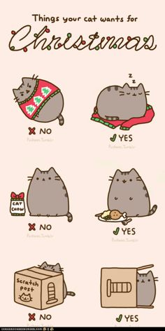 Kitty Christmas