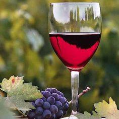 Greenwood Vineyards - Wineries - VirginiaWine.org