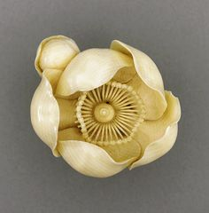 """Tsukamoto Kyokusai (Japan) Camellia, late century Netsuke, Ivory with light staining, sumi"" Amazing carving of a camellia flower Art Japonais, Bone Carving, Japan Art, Ivoire, Nihon, Japanese Culture, Art Decor, Miniatures, Pottery"