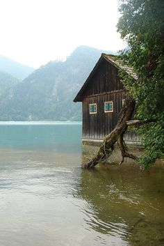 Attersee: must. go. here. Klimt hung out here and was inspired to paint many amazing landscapes.
