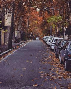 . آه عجب این پاییز برگ ریز هزار رنگ خوش می نشیند در چشم و خیال من ... ومن از ورای سفیدی دیوار های اتاقم همه را ، همه را خوب خوب می دانم؛ دیگر جاده های پاییز را از حفظ شده ام.