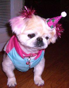 DEC 22 HAPPY BIRTHDAY REGS!!!