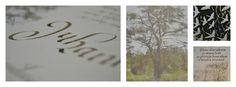 Käsinkirjoitettuja korttejam, Maire Haapimaa Celestial