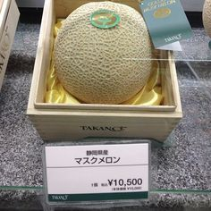 $100 musk melon in a Japanese department store.