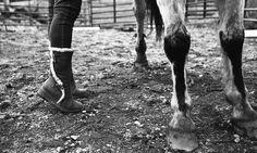 Tall horse :)