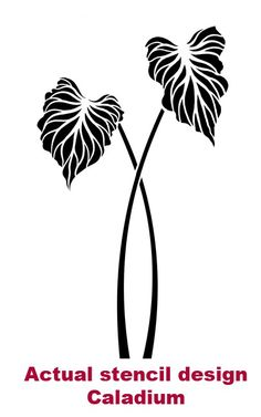Large Stencil Caladium Wall Stencils for Easy Decor Better Large Wall Stencil, Large Stencils, Stencil Painting, Fabric Painting, Wall Stenciling, Flower Stencils, Leaf Stencil, Stencil Templates, Stencil Designs