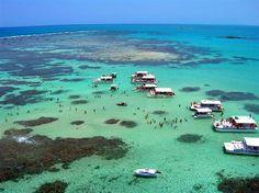 Natural pools. Maragogi. Alagoas. Brasil
