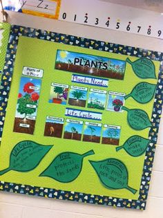 I like how the vocabulary words are written on leaves. Such a happy sunflower! :) Jodi from The Clutter-Free Classroom www.CFClassroom.com