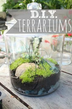 project to work on? Try out this DIY Terrarium project at Terrain. It looks great on a coffee table or even in the kitchen! Miniature Terrarium, Garden Terrarium, Terrarium Workshop, Terrarium Ideas, Indoor Garden, Indoor Plants, Outdoor Gardens, Container Gardening, Gardening Tips