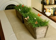 Centerpiece idea?? Without the butterflies.  Scrounge the containers, grow your own grass.  Start now, trim as needed with scissors.  And I don't mean Humboldt grass, LOL!