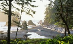 Rugged yet serene, Ruby Beach in Washington feels almost mythical, especially at low tide and in the fog. (From: Photos: Secret Beaches of North America)