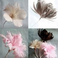 Flores hechas de pumas tres modelos con explicaciones  DIY How to make three (3) styles of feather flowers tutorial