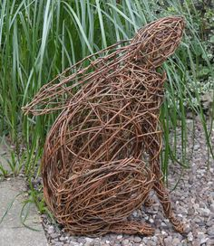 Willow hare gazing at the moon
