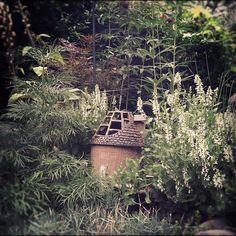 Raegnar Ness's #sculpture #fairy #garden in #brooklyn #newyork #newyorkcity #nyc