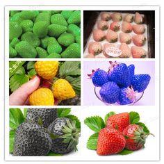 300 Strawberry Seeds, 50 Pcs/ 6 Types  DIY Home Fruti Garden TastY & Healthy Easy  Free Shipping